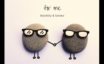 Artist - Blacklily